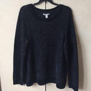 NWT Dana Buchman Chenille Shine Sweater
